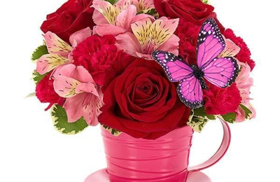 Andalusia Flower & Gift