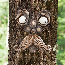 Old Man Tree Face Tree Hugger - unique gifts canada