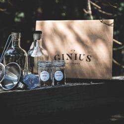 Genius DIY Gin Kit
