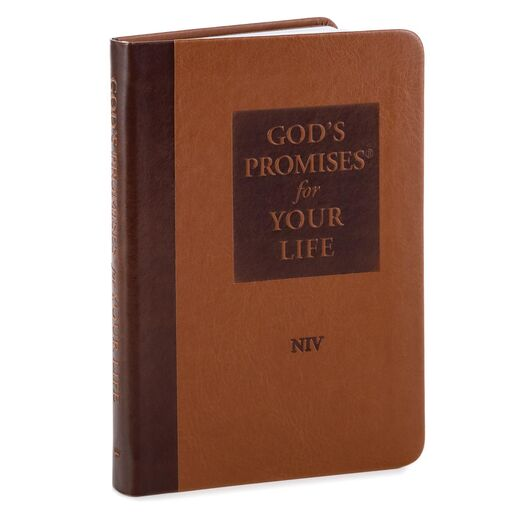 God's Promises for Your Life Gift Book