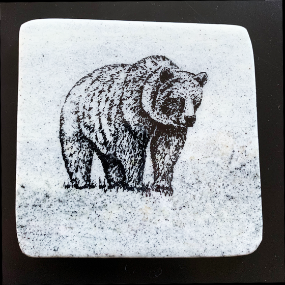 Grizzly Bear Stone Coasters