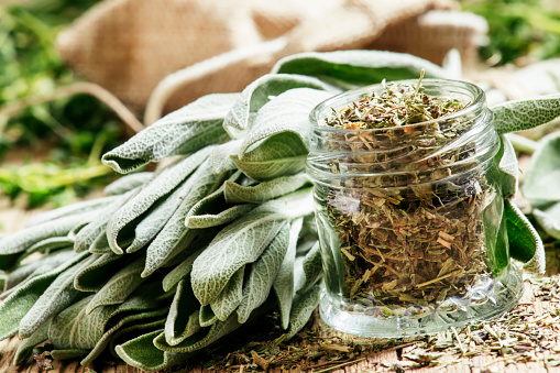 where to buy sage