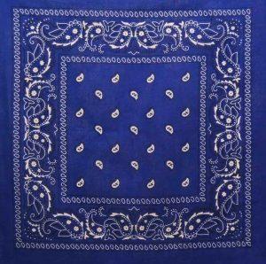 Blue Classic Paisley Bandana