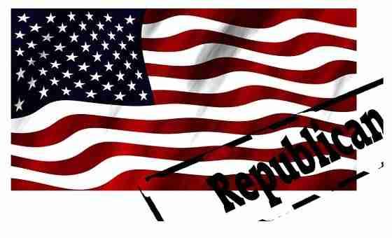 Banner, Flag, Blow, Republican, Politics