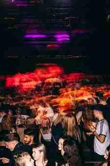 Concert, Crowd, Party, Disco